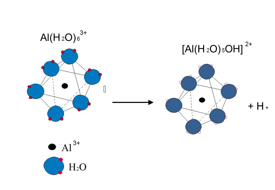 Al H 2 O Al(H 2 O) 6 3+ + H + [Al(H 2 O) 5 OH] 2+