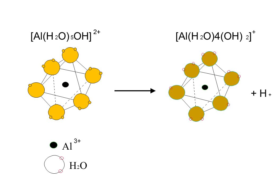 Al H 2 O [Al(H 2 O) 5 OH] 2+ 3+ + H + [Al(H 2 O)4(OH) 2 ] +