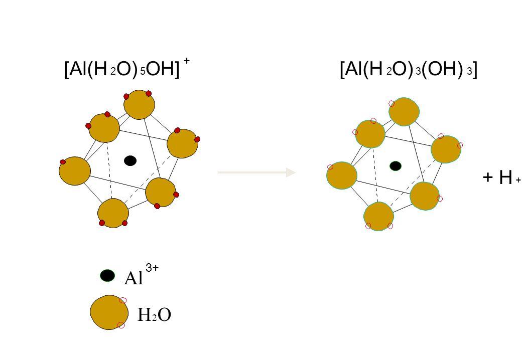 Al H 2 O [Al(H 2 O) 5 OH] + 3+ + H + [Al(H 2 O) 3 (OH) 3 ]