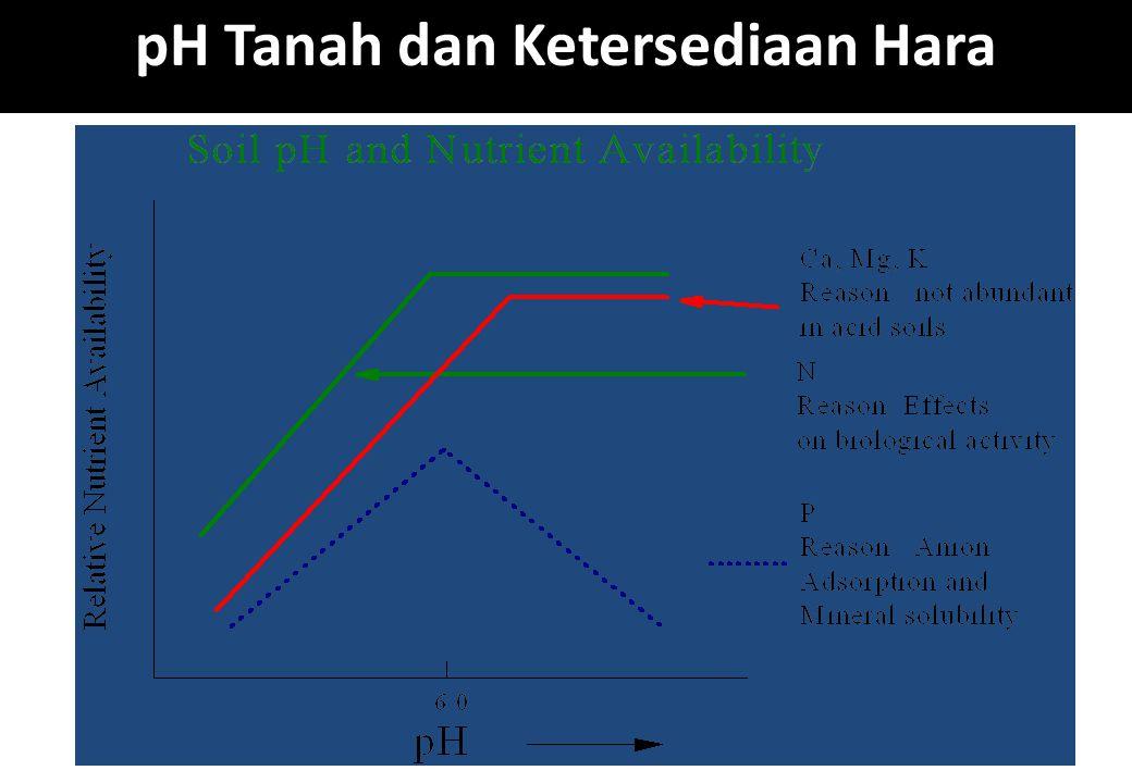 pH Tanah dan Ketersediaan Hara