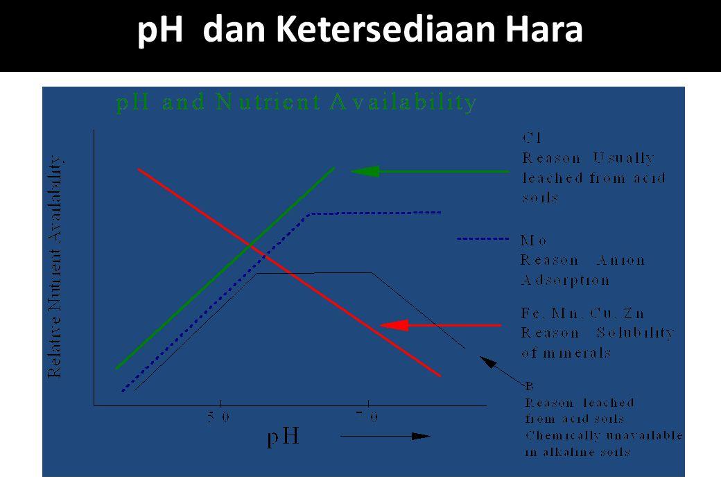 pH dan Ketersediaan Hara