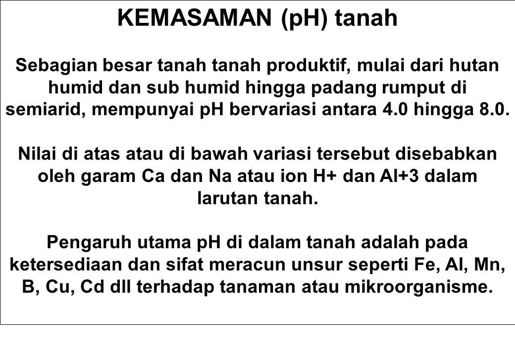 Mengoreksi Kemasaman Tanah Ada dua komponen kemasaman tanah yaitu : __________ acidity, which is ____ in the soil solution, and ____________ acidity which is _______ on the soil clay cation exchange sites.
