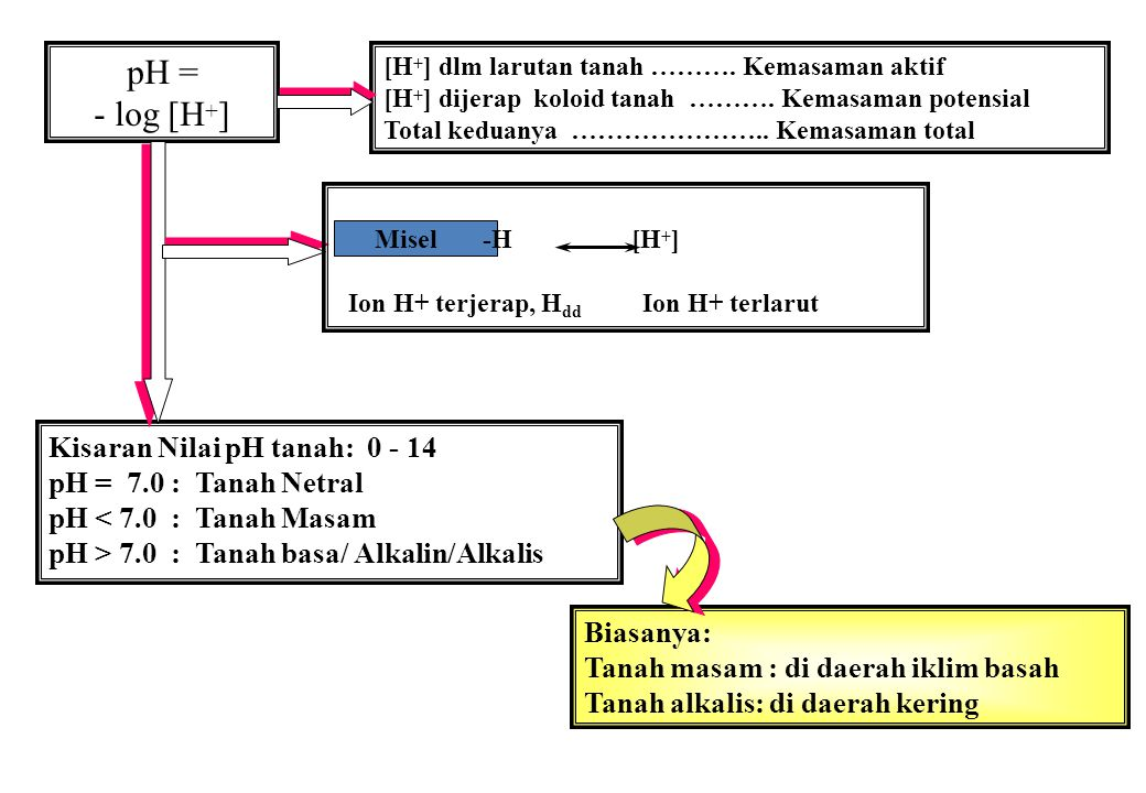 pH = - log [H + ] [H + ] dlm larutan tanah ………. Kemasaman aktif [H + ] dijerap koloid tanah ………. Kemasaman potensial Total keduanya ………………….. Kemasama
