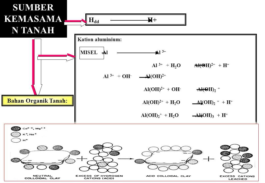 Kation aluminium: MISEL Al Al 3+ Al 3+ + H 2 O Al(OH) 2+ + H + Al 3+ + OH - Al(OH) 2+ Al(OH) 2+ + OH - Al(OH) 2 + Al(OH) 2+ + H 2 O Al(OH) 2 + + H + A