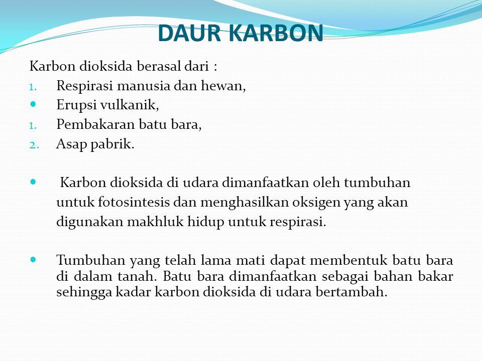 DAUR KARBON Karbon dioksida berasal dari : 1. Respirasi manusia dan hewan, Erupsi vulkanik, 1. Pembakaran batu bara, 2. Asap pabrik. Karbon dioksida d