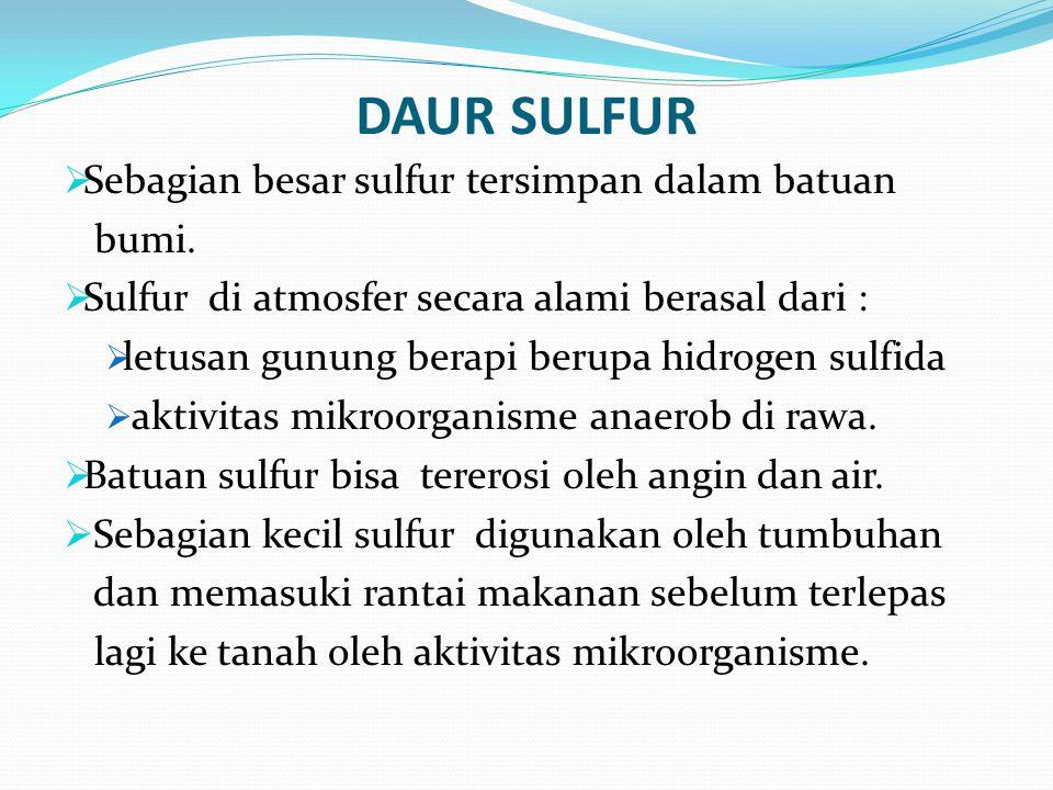 DAUR SULFUR  Sebagian besar sulfur tersimpan dalam batuan bumi.  Sulfur di atmosfer secara alami berasal dari :  letusan gunung berapi berupa hidro
