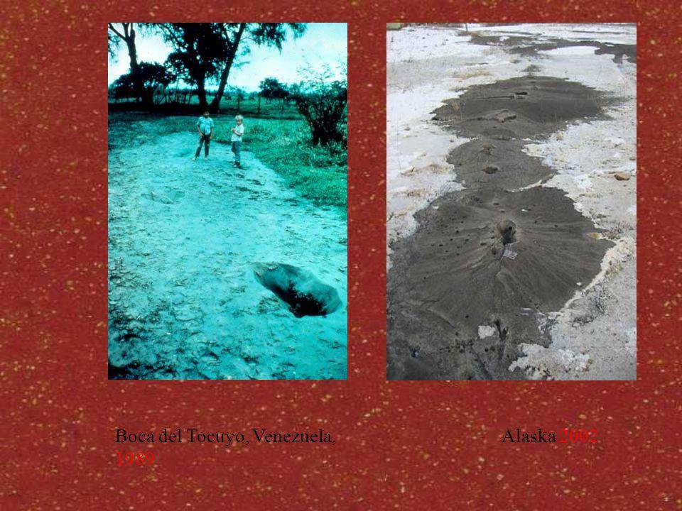 Alaska 2002Boca del Tocuyo, Venezuela, 1989