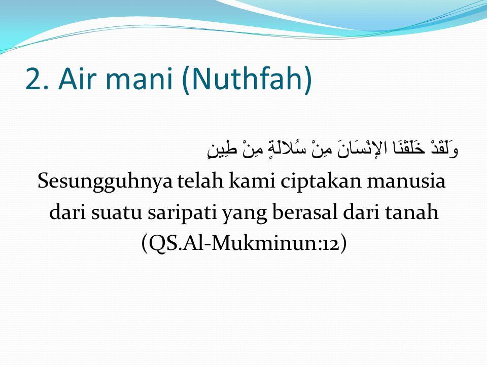 2. Air mani (Nuthfah) وَلَقَدْ خَلَقْنَا الإنْسَانَ مِنْ سُلالَةٍ مِنْ طِينٍ Sesungguhnya telah kami ciptakan manusia dari suatu saripati yang berasal