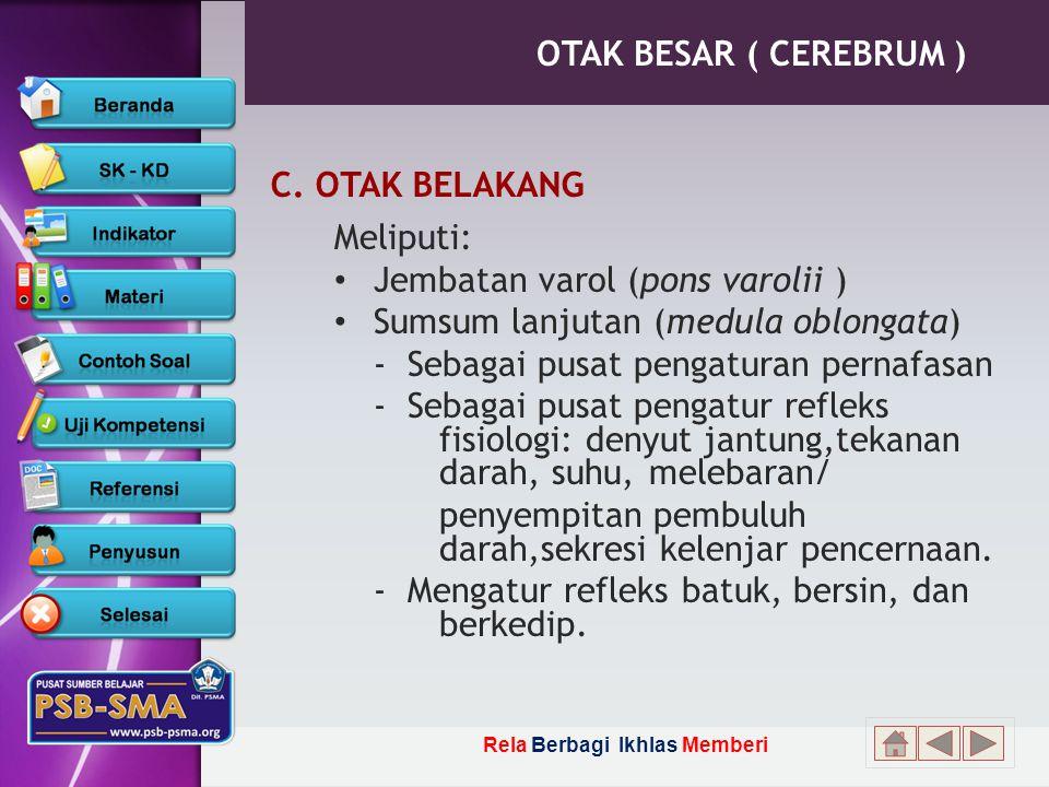 Rela Berbagi Ikhlas Memberi OTAK BESAR ( CEREBRUM ) C.