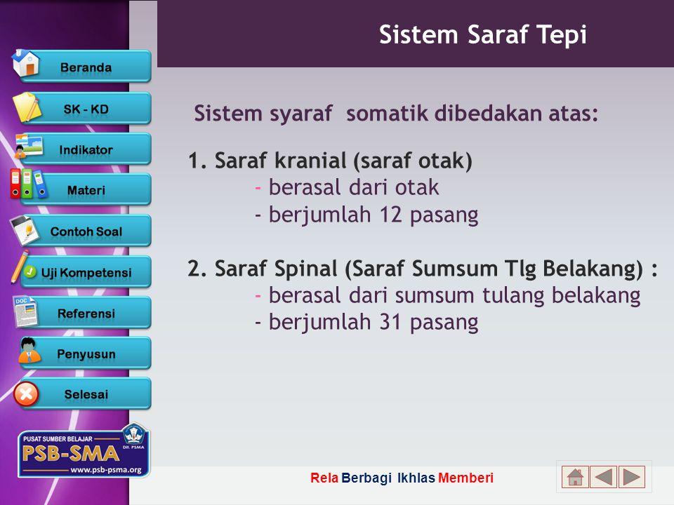 Rela Berbagi Ikhlas Memberi Sistem Saraf Tepi Sistem syaraf somatik dibedakan atas: 1.