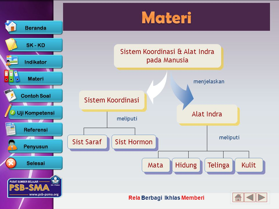Rela Berbagi Ikhlas Memberi Sistem Koordinasi & Alat Indra pada Manusia Sistem Koordinasi & Alat Indra pada Manusia Sistem Koordinasi Alat Indra Telinga Kulit Hidung Mata Sist Hormon Sist Saraf meliputi menjelaskan