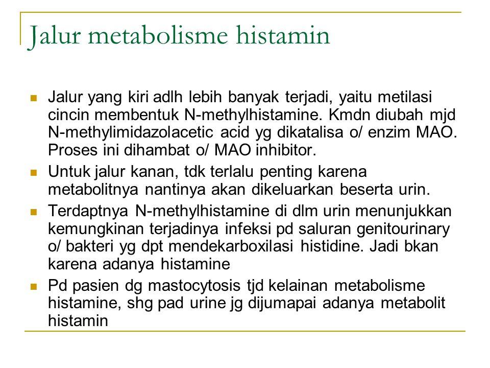 Jalur metabolisme histamin Jalur yang kiri adlh lebih banyak terjadi, yaitu metilasi cincin membentuk N-methylhistamine. Kmdn diubah mjd N-methylimida