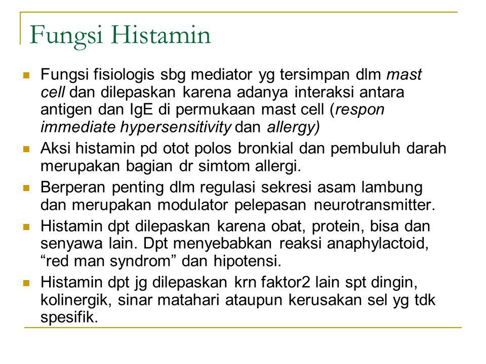 Fungsi Histamin Fungsi fisiologis sbg mediator yg tersimpan dlm mast cell dan dilepaskan karena adanya interaksi antara antigen dan IgE di permukaan m
