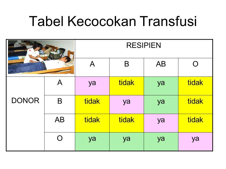 Tabel Kecocokan Transfusi RESIPIEN ABABO DONOR Ayatidakyatidak B ya tidak ABtidak yatidak Oya