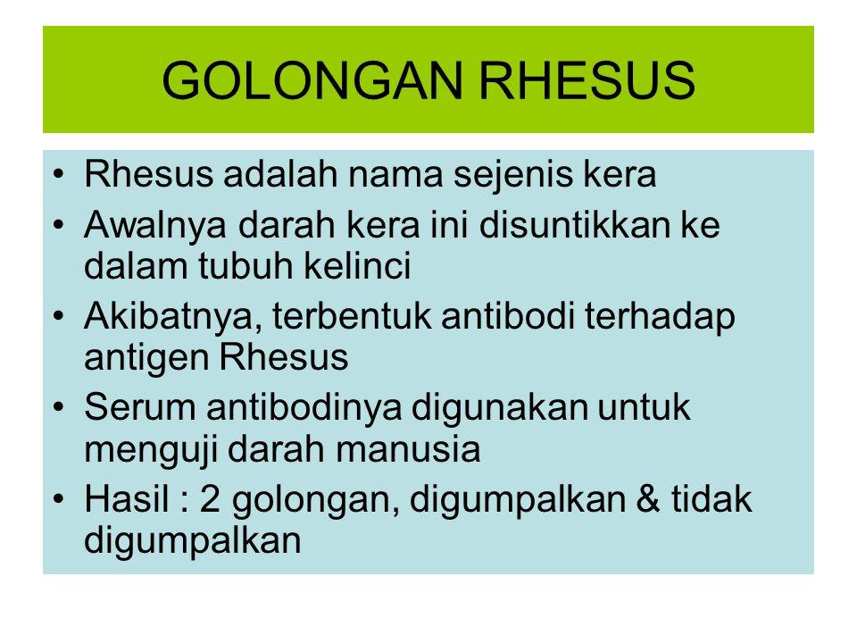 GOLONGAN RHESUS Rhesus adalah nama sejenis kera Awalnya darah kera ini disuntikkan ke dalam tubuh kelinci Akibatnya, terbentuk antibodi terhadap antigen Rhesus Serum antibodinya digunakan untuk menguji darah manusia Hasil : 2 golongan, digumpalkan & tidak digumpalkan