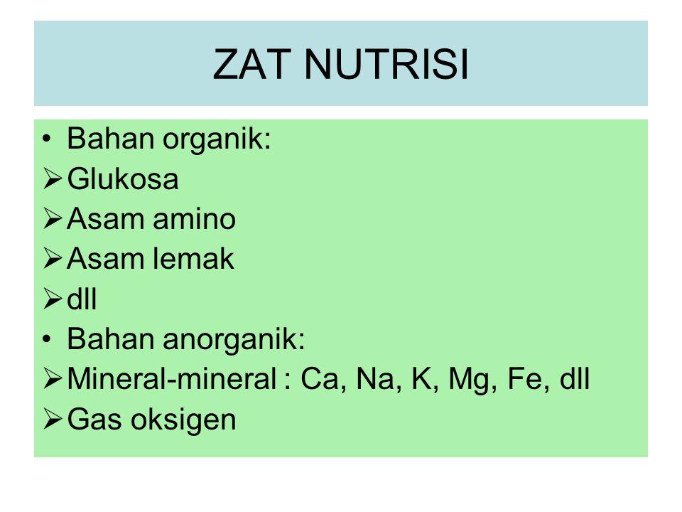 ZAT NUTRISI Bahan organik:  Glukosa  Asam amino  Asam lemak  dll Bahan anorganik:  Mineral-mineral : Ca, Na, K, Mg, Fe, dll  Gas oksigen