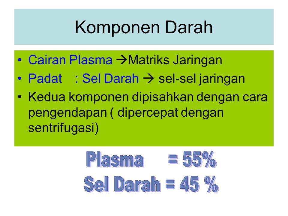 Komponen Darah Cairan Plasma  Matriks Jaringan Padat: Sel Darah  sel-sel jaringan Kedua komponen dipisahkan dengan cara pengendapan ( dipercepat dengan sentrifugasi)