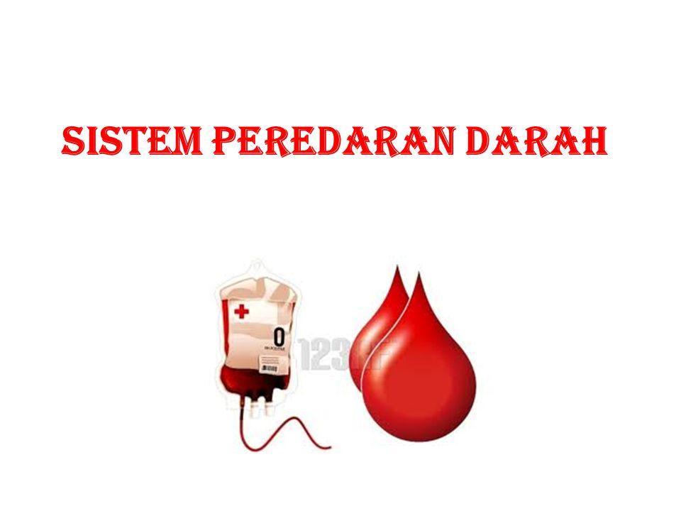 FUNGSI DARAH 1.Mengangkut sari-2 makanan dari usus ke seluruh tubuh  plasma darah 2.Mengangkut O 2 dari paru-2 ke seluruh tubuh dan CO 2 dari seluruh tubuh ke paru-2  SDM 3.Mengangkut hormon dari kelenjar ke sel target  plasma darah 4.Mengangkut sisa-2 metabolisme dari seluruh tubuh ke alat ekskresi  plasma darah 5.Menjaga kestabilan suhu tubuh 6.Membunuh kuman dan penyakit  SDP 7.Pembekuan darah  Keping-keping darah