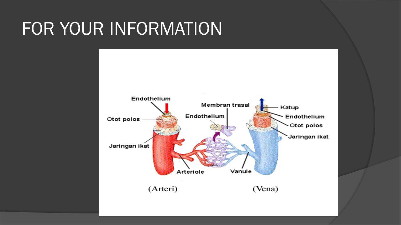 Penyakit dan kelainan sistem peredaran darah Kelainan pada sistem peredaran darah atau sistem transportasi manusia dapat terjadi karena bawaan sejak lahir, kecelakaan, penyakit-penyakit tertentu dalam waktu yang lama.