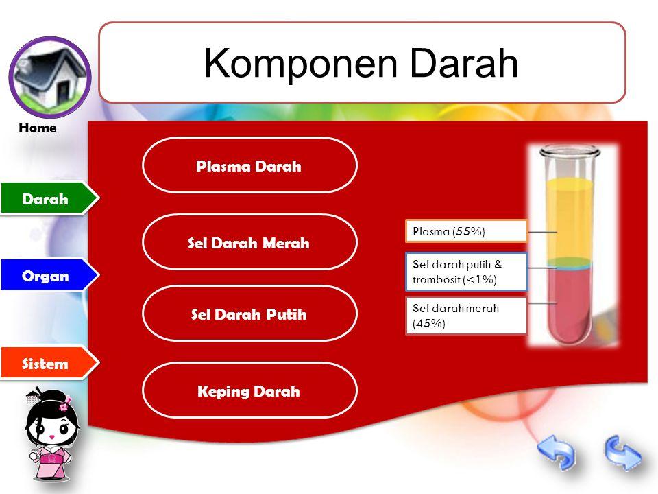 Komponen Darah Darah Sistem Organ Keping Darah Plasma Darah Sel Darah Merah Sel Darah Putih Plasma (55%) Sel darah putih & trombosit (<1%) Sel darah merah (45%) Home