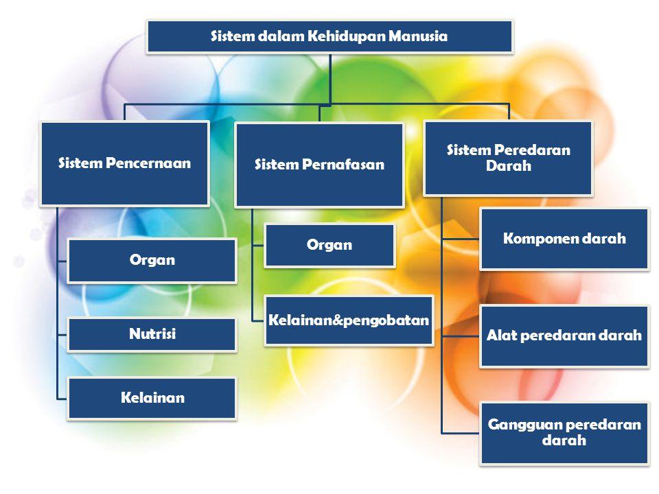 Sistem dalam Kehidupan Manusia Sistem Pencernaan Organ Nutrisi Kelainan Sistem Pernafasan Organ Kelainan&pengobatan Sistem Peredaran Darah Komponen darah Alat peredaran darah Gangguan peredaran darah
