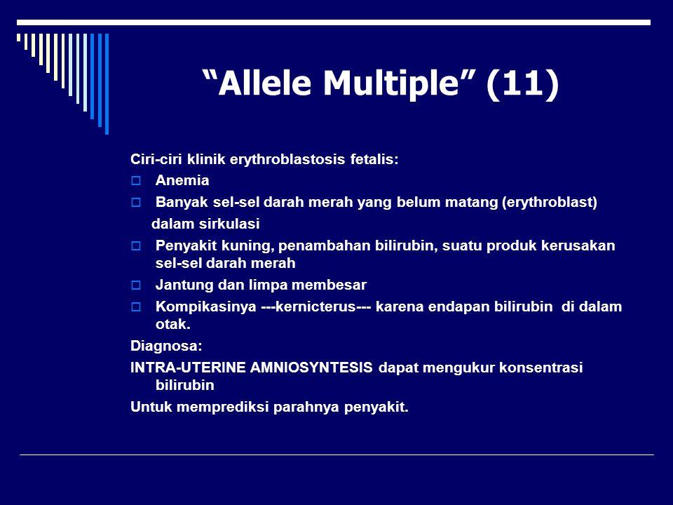 """""""Allele Multiple"""" (11) Ciri-ciri klinik erythroblastosis fetalis:  Anemia  Banyak sel-sel darah merah yang belum matang (erythroblast) dalam sirkula"""