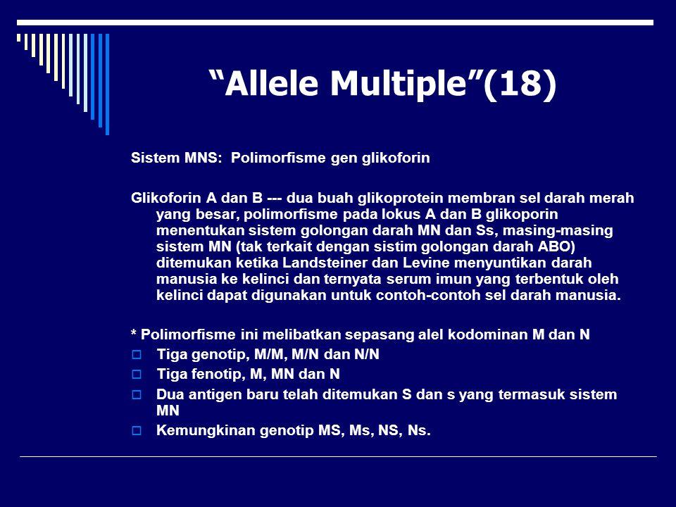 """Allele Multiple""(18) Sistem MNS: Polimorfisme gen glikoforin Glikoforin A dan B --- dua buah glikoprotein membran sel darah merah yang besar, polimor"