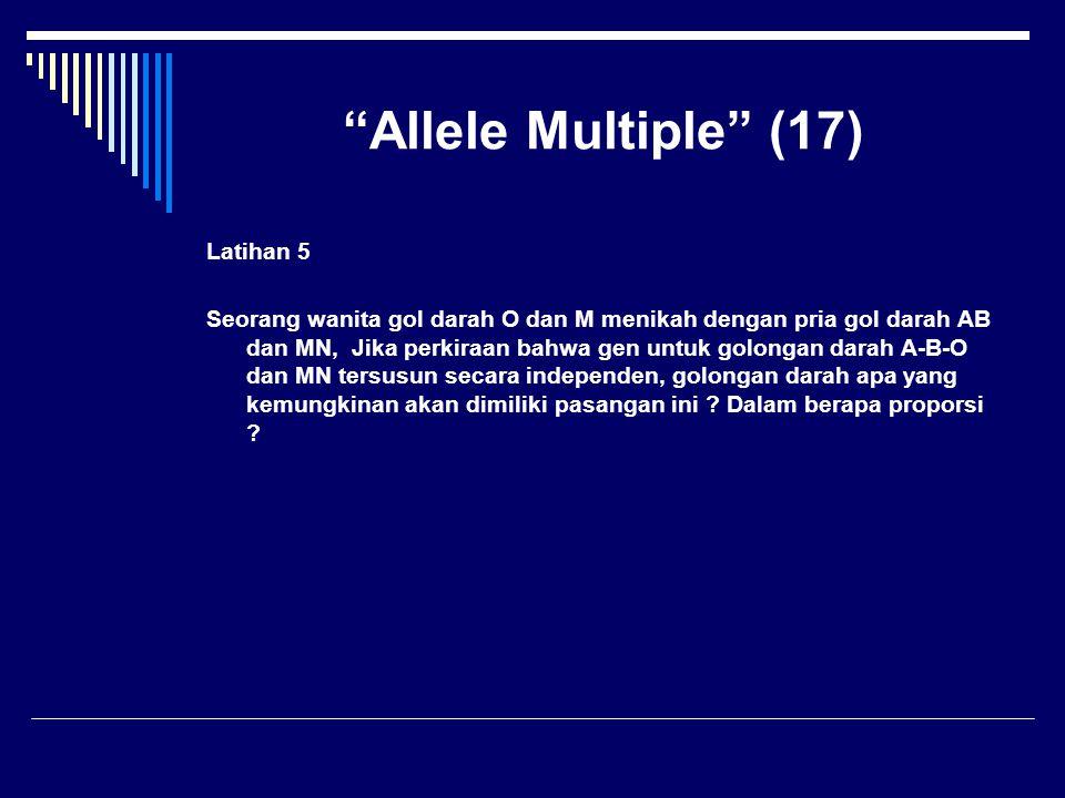 """""""Allele Multiple"""" (17) Latihan 5 Seorang wanita gol darah O dan M menikah dengan pria gol darah AB dan MN, Jika perkiraan bahwa gen untuk golongan dar"""