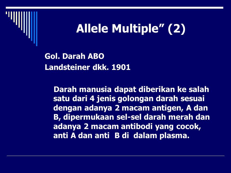 """Allele Multiple"""" (2) Gol. Darah ABO Landsteiner dkk. 1901 Darah manusia dapat diberikan ke salah satu dari 4 jenis golongan darah sesuai dengan adanya"""