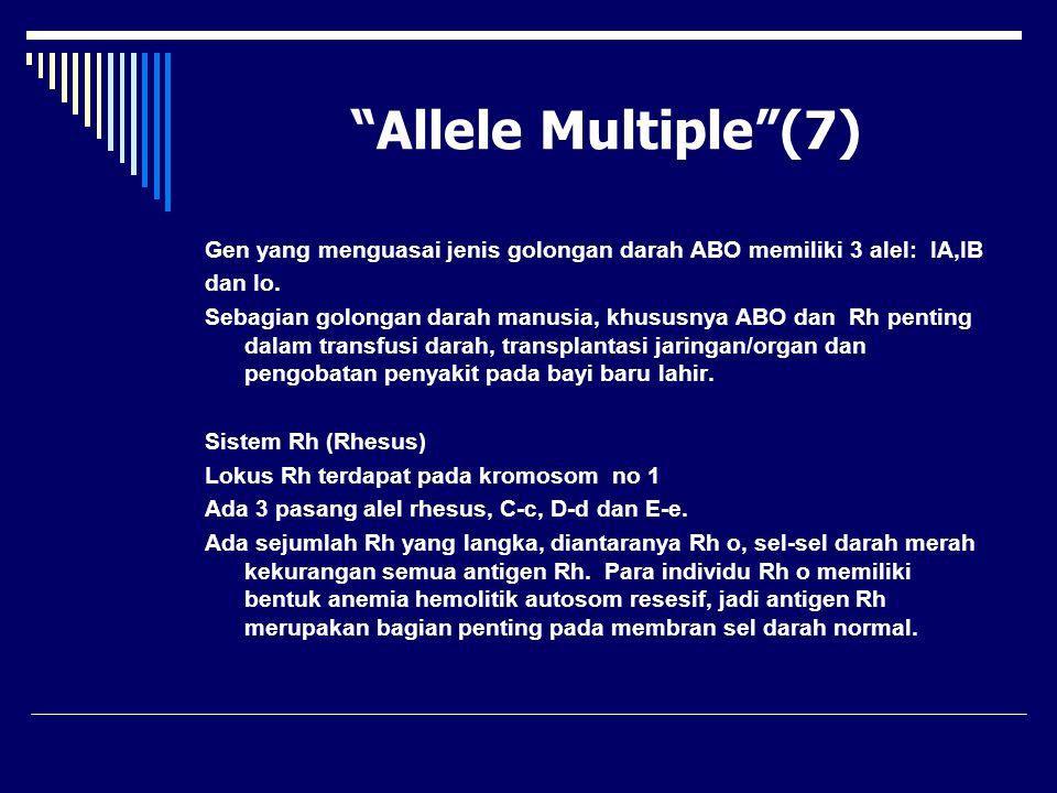 """Allele Multiple""(7) Gen yang menguasai jenis golongan darah ABO memiliki 3 alel: IA,IB dan Io. Sebagian golongan darah manusia, khususnya ABO dan Rh"