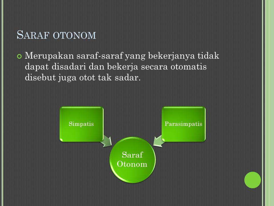 S ARAF OTONOM Merupakan saraf-saraf yang bekerjanya tidak dapat disadari dan bekerja secara otomatis disebut juga otot tak sadar.