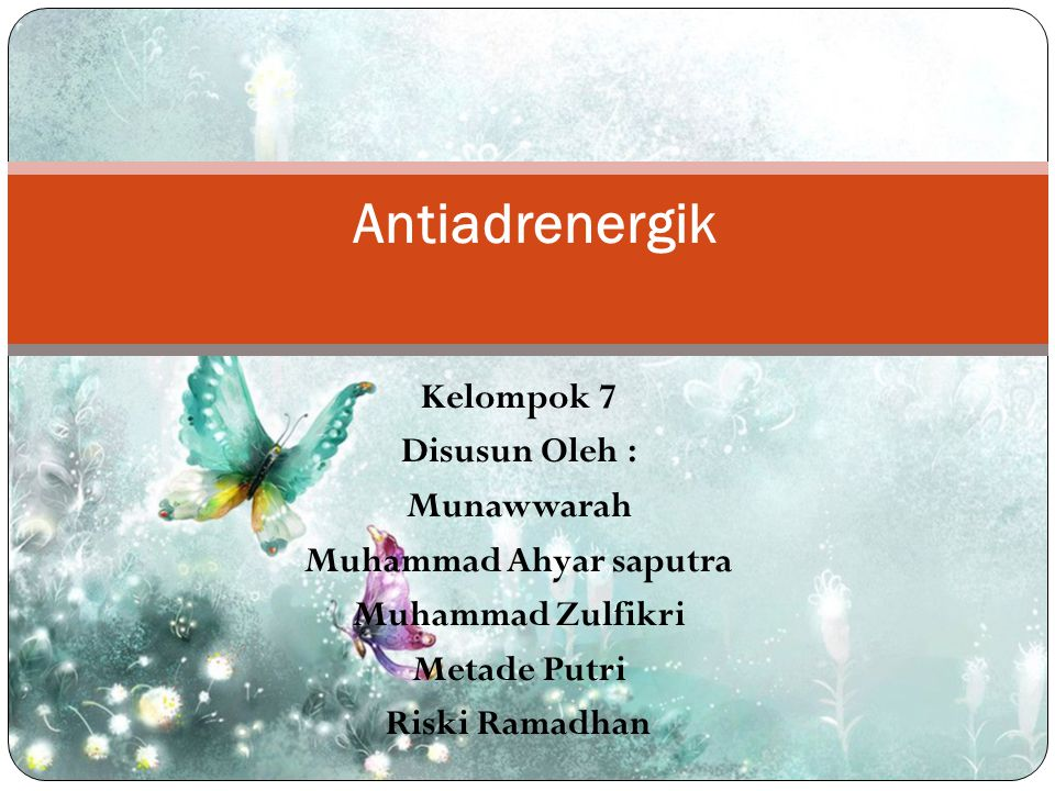Kelompok 7 Disusun Oleh : Munawwarah Muhammad Ahyar saputra Muhammad Zulfikri Metade Putri Riski Ramadhan Antiadrenergik