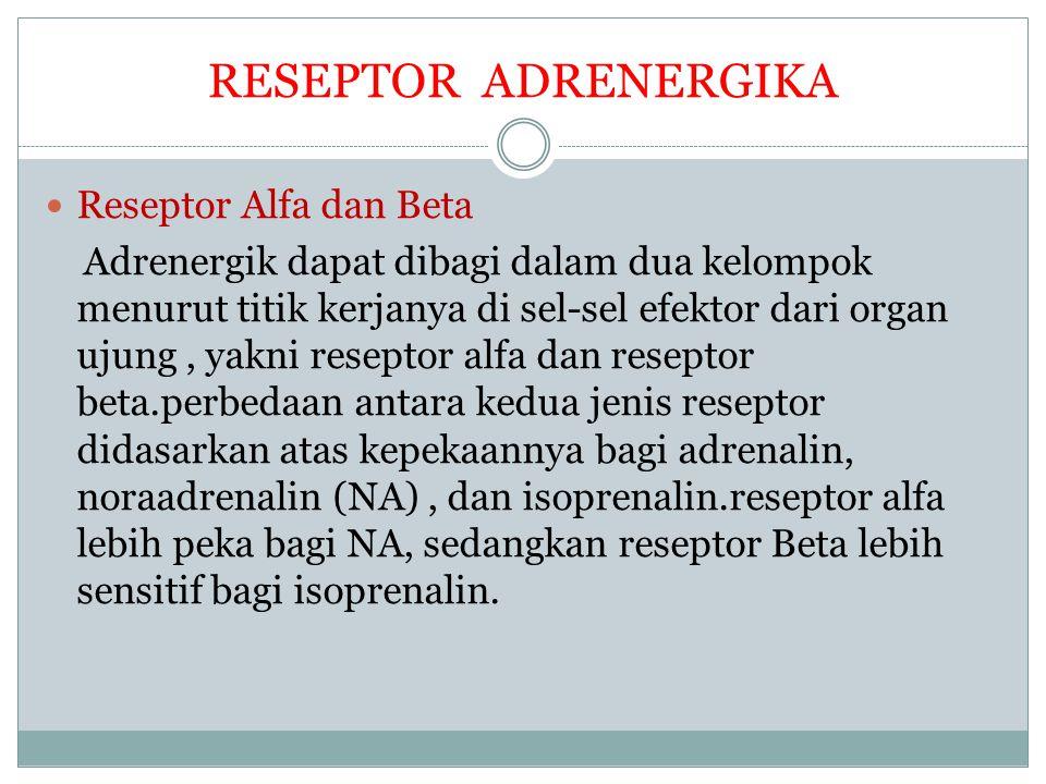 RESEPTOR ADRENERGIKA Reseptor Alfa dan Beta Adrenergik dapat dibagi dalam dua kelompok menurut titik kerjanya di sel-sel efektor dari organ ujung, yak