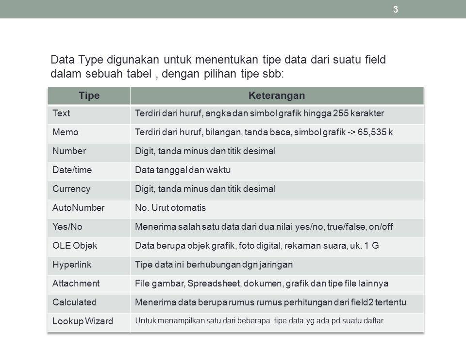 Data Type digunakan untuk menentukan tipe data dari suatu field dalam sebuah tabel, dengan pilihan tipe sbb: 3
