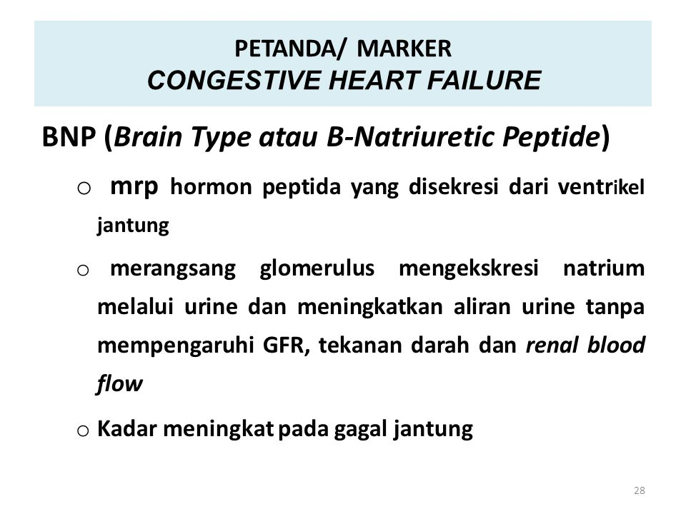 PETANDA/ MARKER CONGESTIVE HEART FAILURE BNP (Brain Type atau B-Natriuretic Peptide) o mrp hormon peptida yang disekresi dari ventr i kel jantung o me