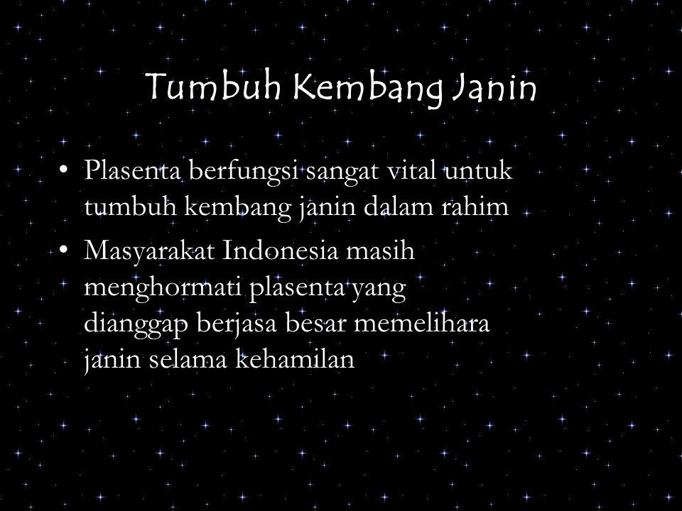 Tumbuh Kembang Janin Plasenta berfungsi sangat vital untuk tumbuh kembang janin dalam rahim Masyarakat Indonesia masih menghormati plasenta yang diang