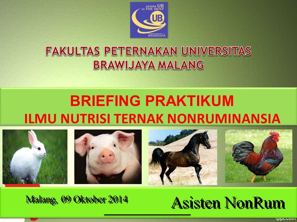 BRIEFING PRAKTIKUM ILMU NUTRISI TERNAK NONRUMINANSIA Asisten NonRum Malang, 09 Oktober 2014