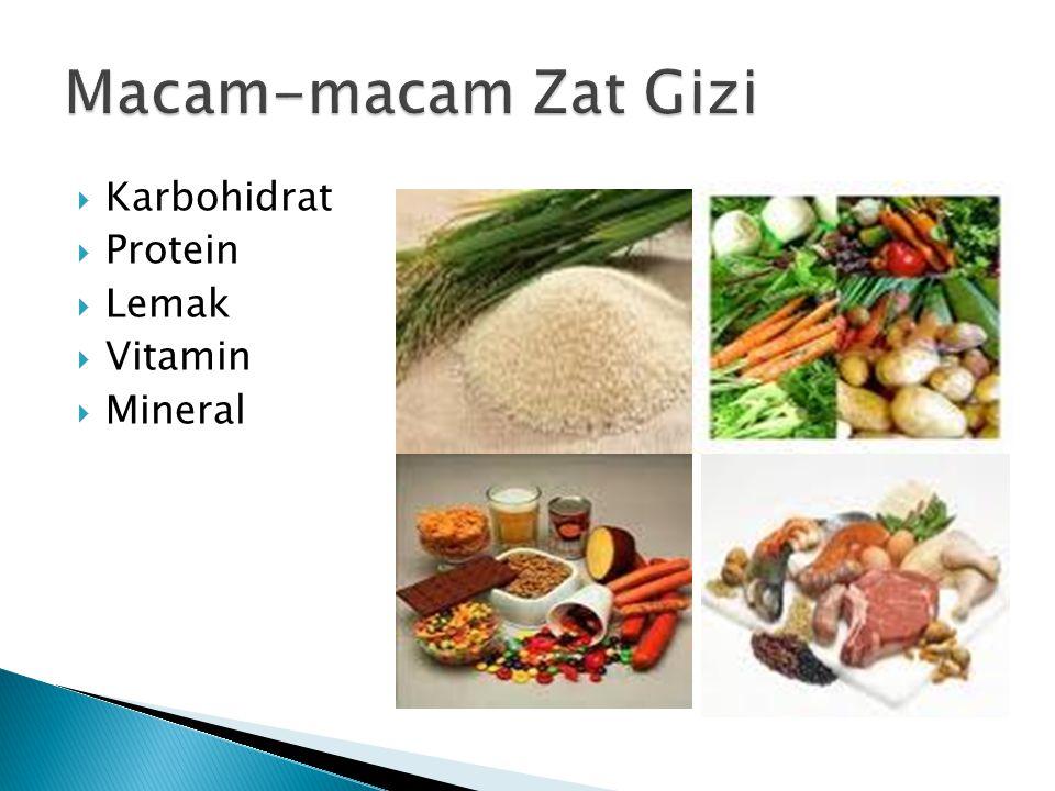  Karbohidrat  Protein  Lemak  Vitamin  Mineral