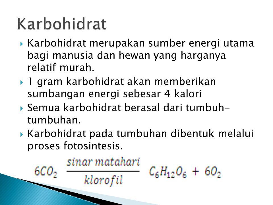  Karbohidrat merupakan sumber energi utama bagi manusia dan hewan yang harganya relatif murah.