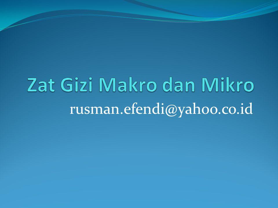 rusman.efendi@yahoo.co.id