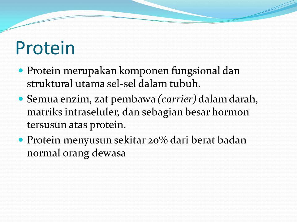 Protein Protein merupakan komponen fungsional dan struktural utama sel-sel dalam tubuh. Semua enzim, zat pembawa (carrier) dalam darah, matriks intras