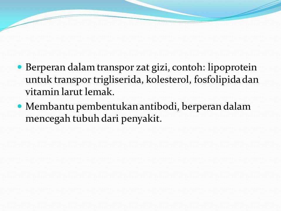 Berperan dalam transpor zat gizi, contoh: lipoprotein untuk transpor trigliserida, kolesterol, fosfolipida dan vitamin larut lemak. Membantu pembentuk