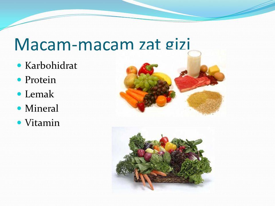 Macam-macam zat gizi Karbohidrat Protein Lemak Mineral Vitamin