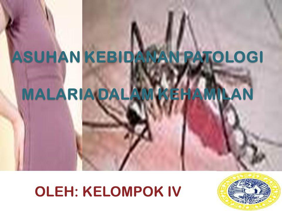 ASUHAN KEBIDANAN PATOLOGI MALARIA DALAM KEHAMILAN OLEH: KELOMPOK IV