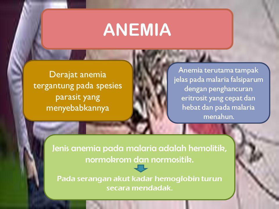 Derajat anemia tergantung pada spesies parasit yang menyebabkannya Jenis anemia pada malaria adalah hemolitik, normokrom dan normositik. Pada serangan