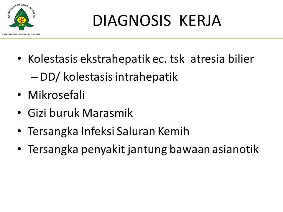 DIAGNOSIS KERJA Kolestasis ekstrahepatik ec. tsk atresia bilier – DD/ kolestasis intrahepatik Mikrosefali Gizi buruk Marasmik Tersangka Infeksi Salura