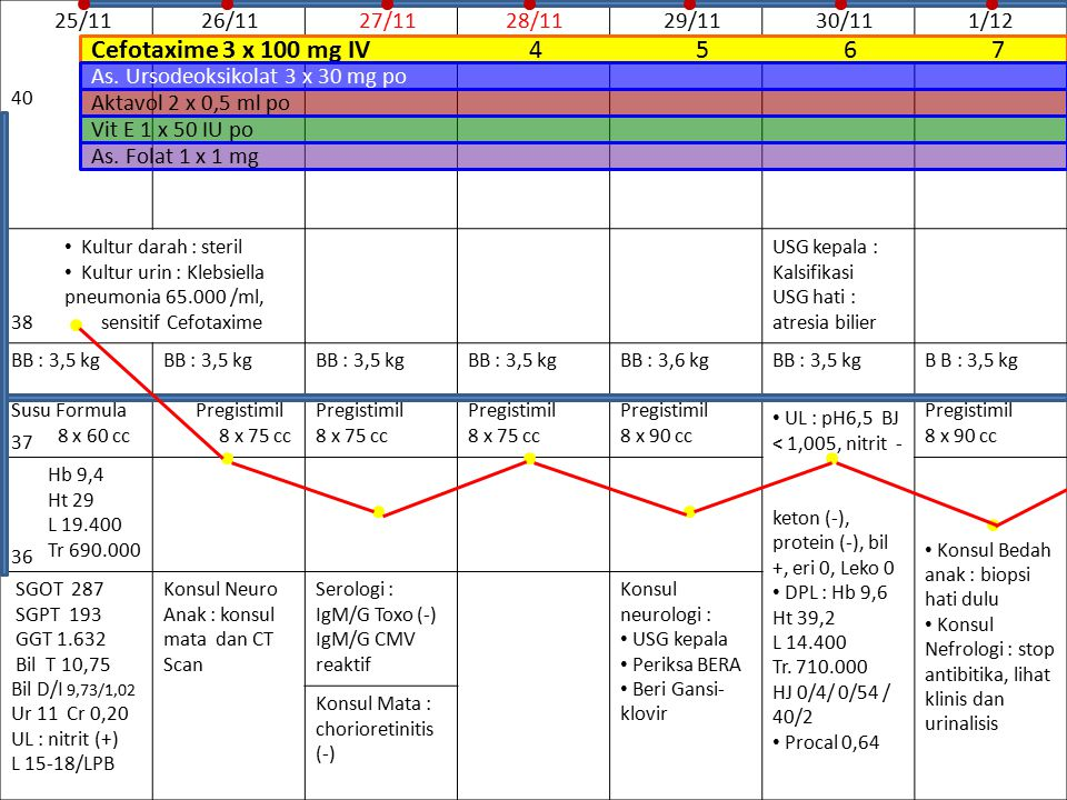 25/11 26/11 27/11 28/11 29/11 30/11 1/12 Kultur darah : steril Kultur urin : Klebsiella pneumonia 65.000 /ml, sensitif Cefotaxime USG kepala : Kalsifi