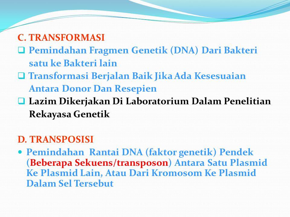 C. TRANSFORMASI  Pemindahan Fragmen Genetik (DNA) Dari Bakteri satu ke Bakteri lain  Transformasi Berjalan Baik Jika Ada Kesesuaian Antara Donor Dan