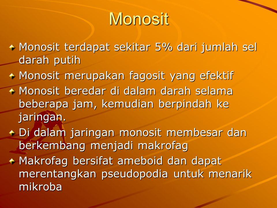 Monosit Monosit terdapat sekitar 5% dari jumlah sel darah putih Monosit merupakan fagosit yang efektif Monosit beredar di dalam darah selama beberapa