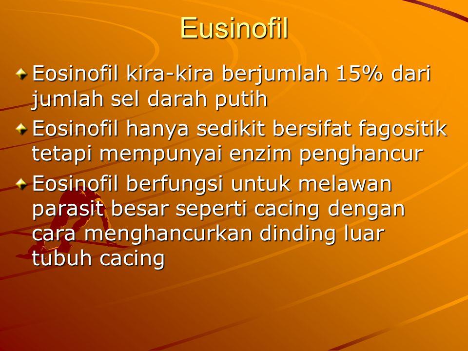 Eusinofil Eosinofil kira-kira berjumlah 15% dari jumlah sel darah putih Eosinofil hanya sedikit bersifat fagositik tetapi mempunyai enzim penghancur E